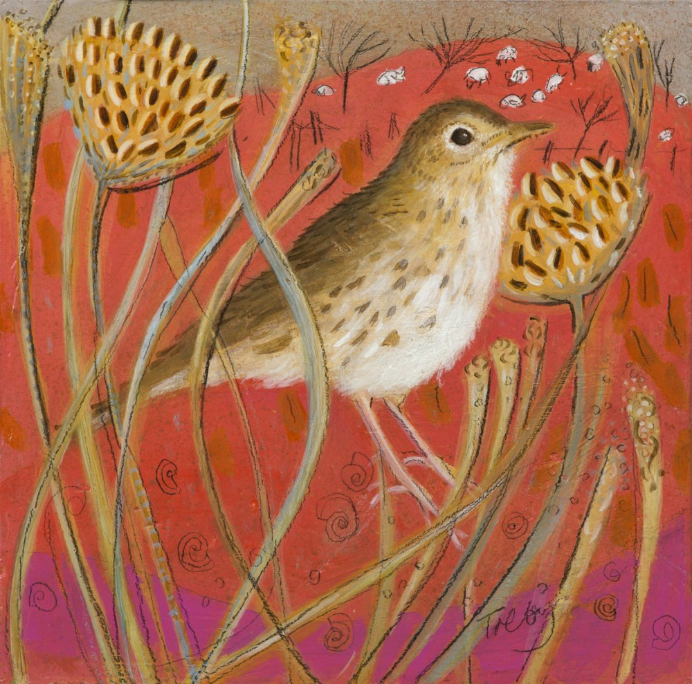Mistle Thrush and Seedheads