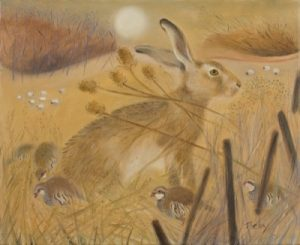 Hare and Red Legged Partridges.